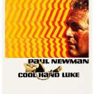 Cool Hand Luke Paul Newman Movie Vintage 24x18 Print Poster