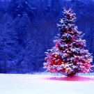 Lonely Christmas Tree Snow 32x24 Print POSTER