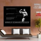 Arnold Schwarzenegger Mr Olympia Muscles Huge Giant Print Poster