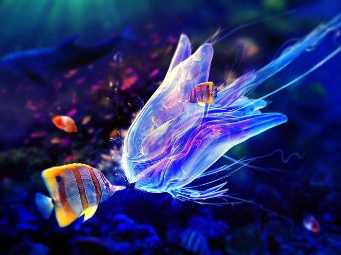 Medusa Jellyfish Underwater Animal Nature 32x24 Print Poster