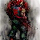 Akuma Street Fighter Anime Art 24x18 Print POSTER