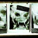 Alien Predator Marine X Ray Photos 24x18 Print Poster