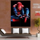 The Amazing Spider Man Movie Huge Giant Print Poster