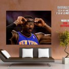 Amare Stoudemire New York Knicks Nba Huge Giant Print Poster