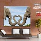 Elephants Trunks Love Heart Wild Animal GIANT 63x47 Print Poster
