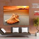 Seashell Sunset Sand Beach Nature Huge Giant Print Poster
