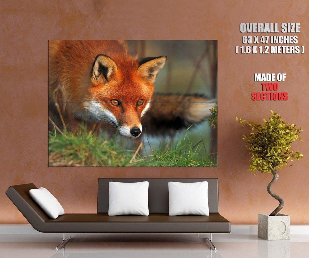 Hunting Fox Cunning Animal HUGE GIANT Print Poster