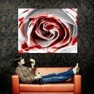 White Blood Rose Macro Flower Huge 47x35 Print POSTER