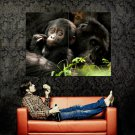 Small Monkey Animal Nature Cute Huge 47x35 Print Poster