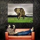 Majestic Elephant Animal National Geographic Huge 47x35 Print Poster