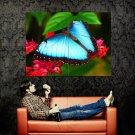 Beautiful Butterfly Macro Nature Huge 47x35 Print Poster