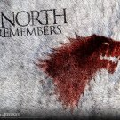 Game Of Thrones Fur The North Remembers TV Series 32x24 Print POSTER
