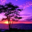 Beautiful Purple Sunset Nature Landscape 32x24 Print POSTER