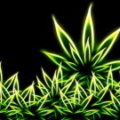 Cannabis Marijuana Weed Leaves Neon Art 32x24 Print POSTER