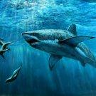 Beast Of Prey Shark Terrible Underwater World Nature 32x24 Print Poster