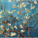 Almond Branches In Bloom Painting Fine Art 32x24 POSTER