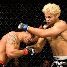 Alves Vs Koscheck MMA Mixed Martial Arts 32x24 Print POSTER