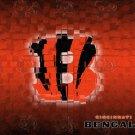 Cincinnati Bengals Logo NFL 32x24 Print Poster