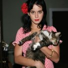 Katy Perry Cat Print 32x24 Poster
