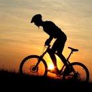 Mountain Bike Silhouette Sunset 32x24 Print Poster