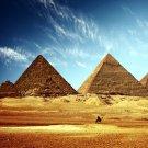 Egypt Pyramids Camel Nature 32x24 Print Poster