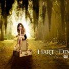 Hart Of Dixie Rachel Bilson TV Series 32x24 Print Poster