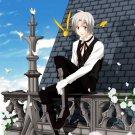 Allen Walker D Gray Man Anime Manga Art 16x12 Print POSTER