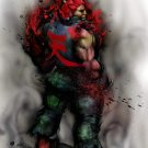 Akuma Street Fighter Anime Art 16x12 Print POSTER