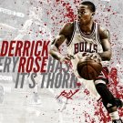 Derrick Rose Chicago Bulls NBA 16x12 Print POSTER