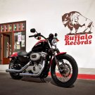 Harley Davidson Sportster Nightster 16x12 Print POSTER