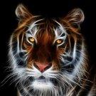 Fractal Tiger Amazing Art 16x12 Print Poster