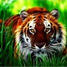 Fractal Tiger Wild Cat Amazing Art 16x12 Print Poster