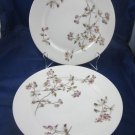 "CFH GDM Haviland French Limoges purple passion flower 8.5"" dish plates"