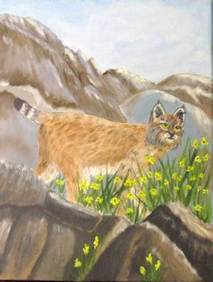 Bobcat, 9x12, ready to hang