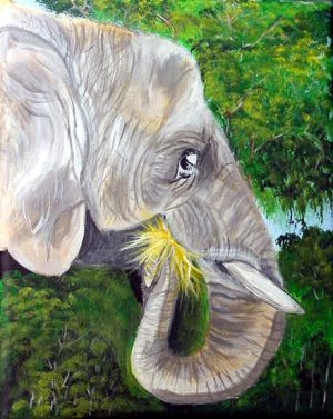 Elephant portrait, ready to hang