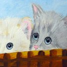"ACEO ""Peeking Kittens"""