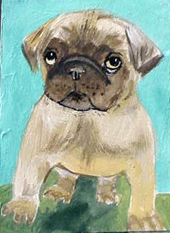 ACEO Pug Puppy