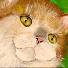 "ACEO ""Chester""  Orange Cat"
