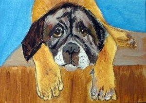 ACEO Sad English Mastiff