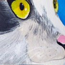ACEO Black and White Cat Portrait
