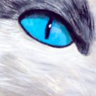 ACEO Blue Cat Eye