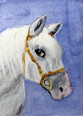 ACEO Andalusian Horse