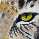 ACEO Leopard Eye