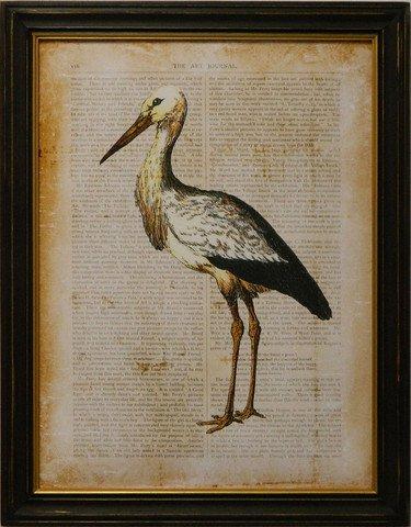 Antiquarian Bird II
