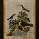 Antiquarian Bird IV