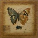 Postscript Butterfly I