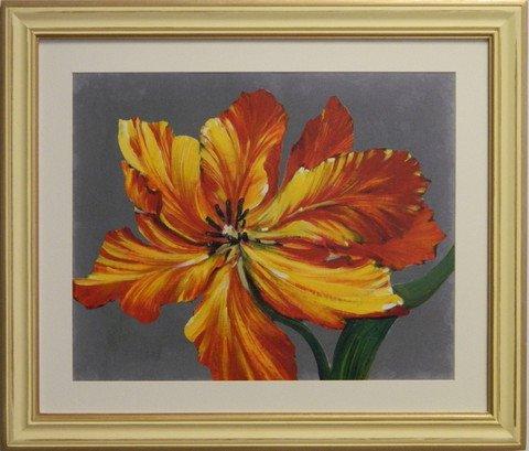 Tulip Portrait I