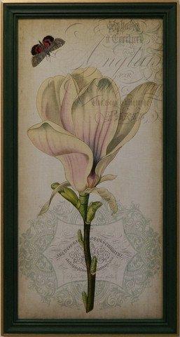 Cartouche & Floral I