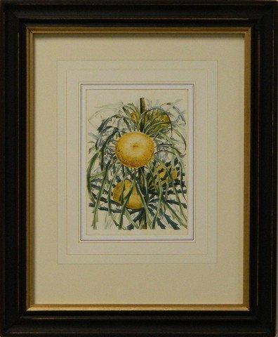 Vintage English Botanical Study Yellow V