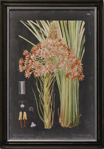 Vintage Slate Botanical III